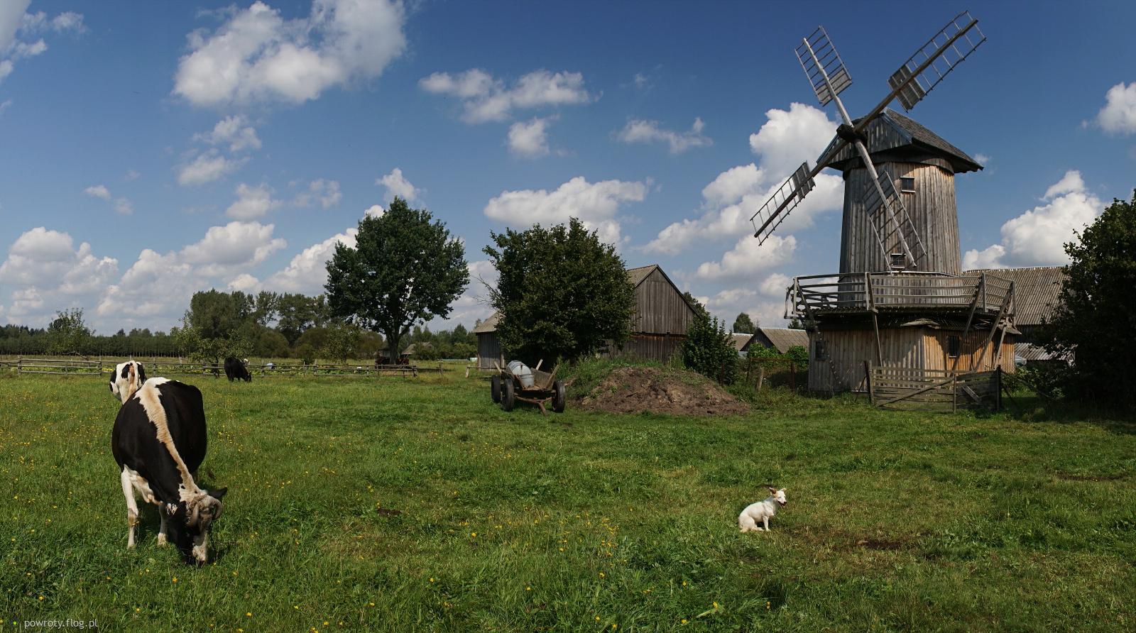 Wieś Koryciski