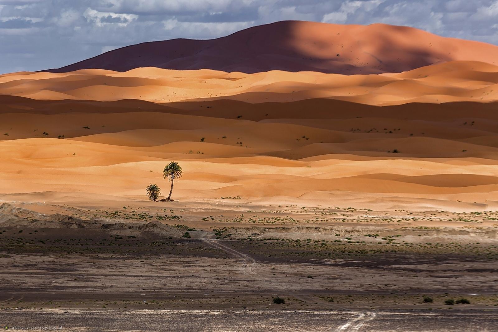 droga na pustynię