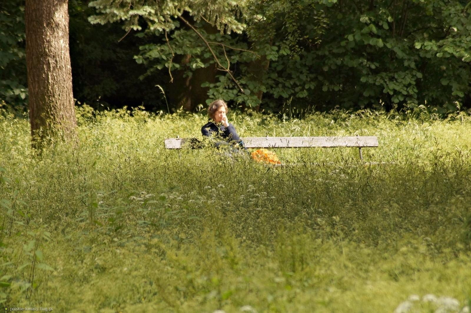 Odpoczynek pośród zielonych traw.