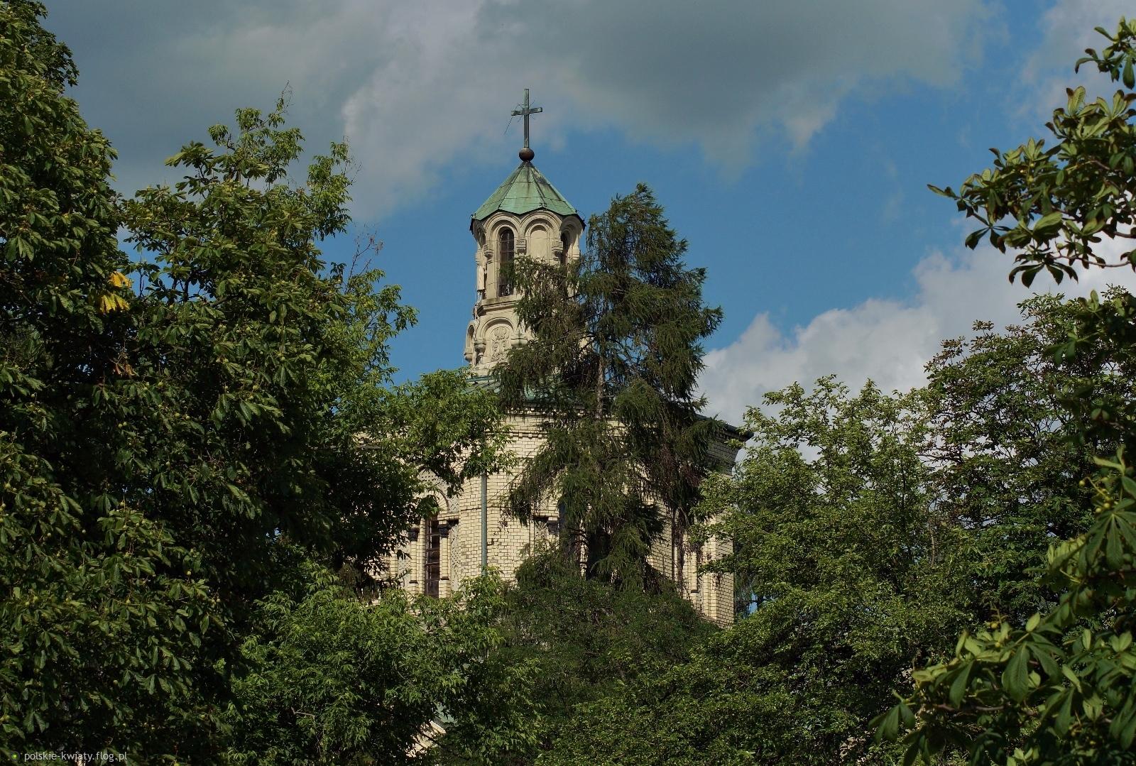 Parafia Katedralna Świętego Ducha Kościoła Polskokatolickiego przy ulicy Szwoleżerów w Warszawie.