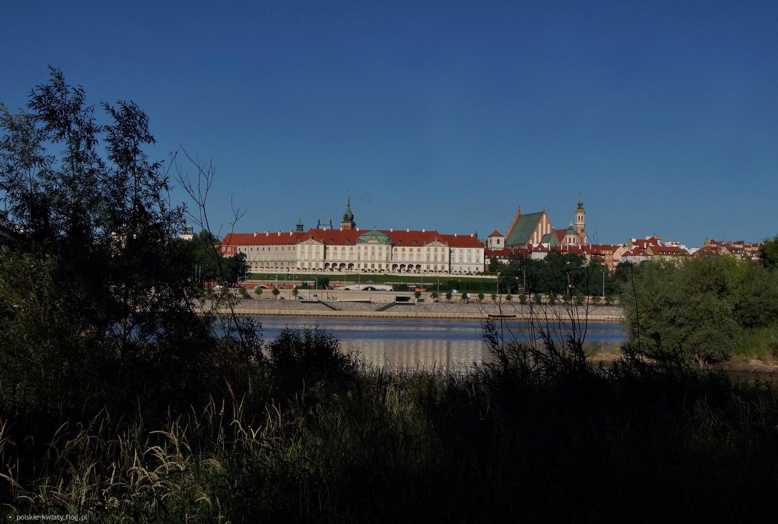 Widok Starego Miasta od strony Pragi.