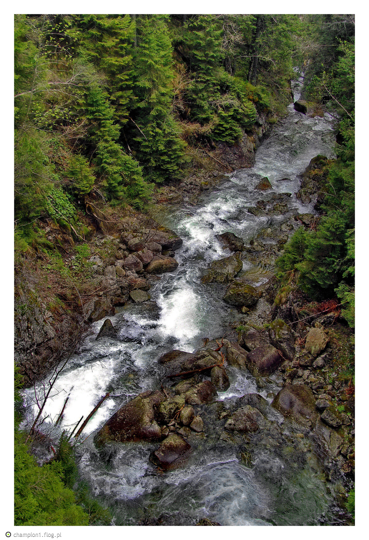 Potok Roztoka