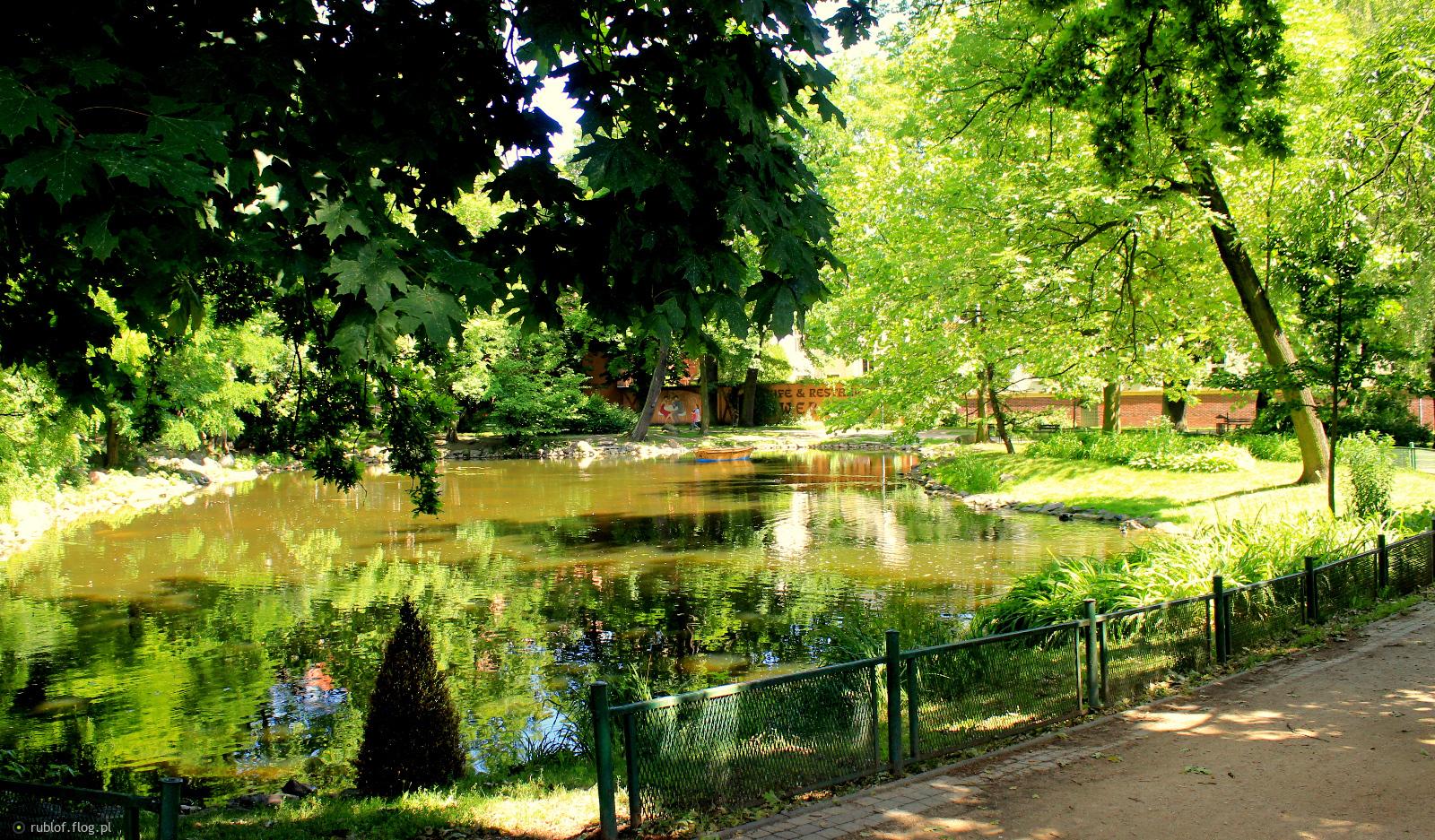 W parku Kazimierza wWelkiego