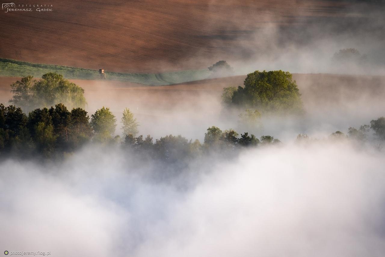 Pośród mgieł