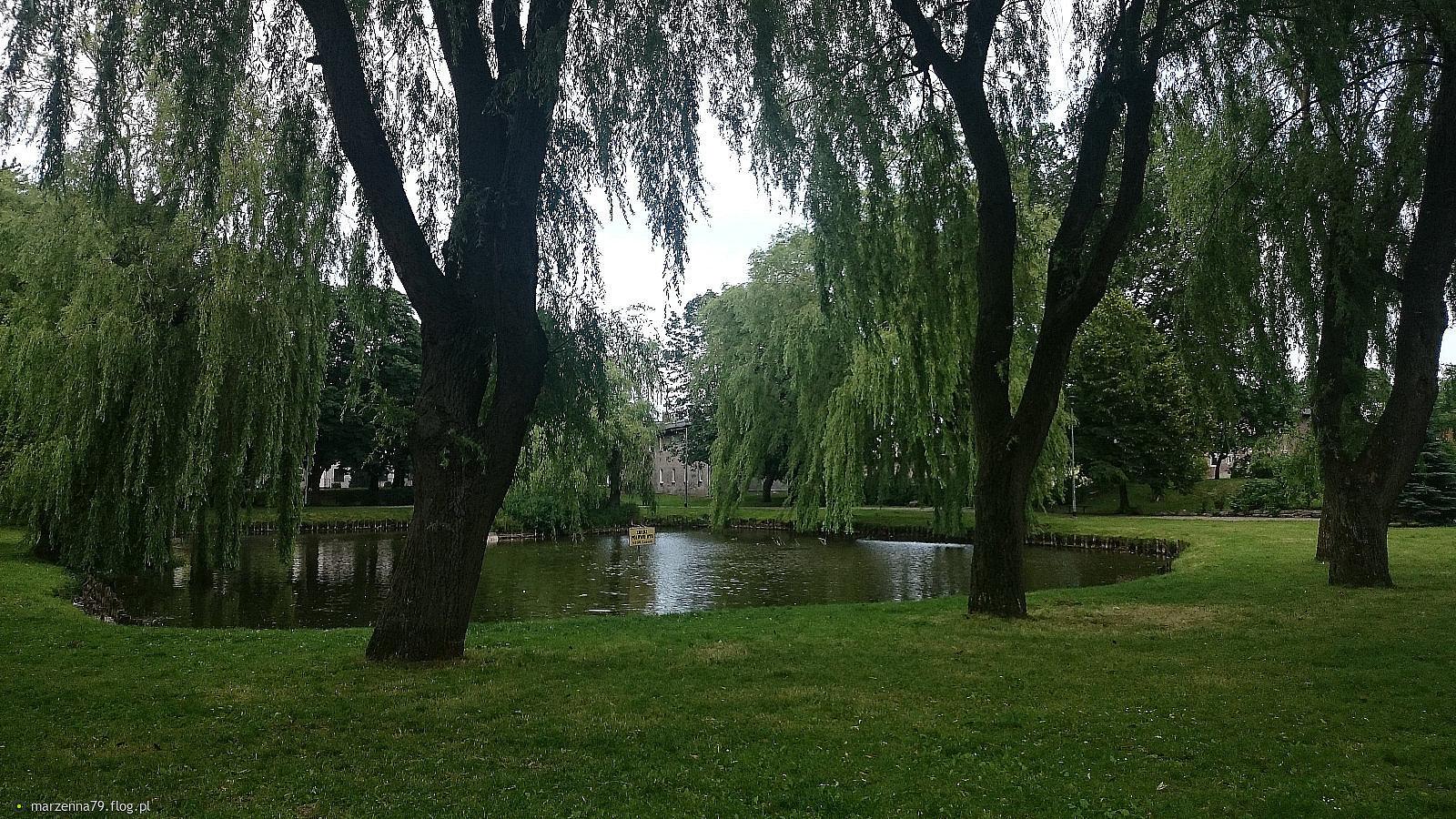 Lębork - Park Kaczyńskich 🍀 dla Ciebie Aniu w podziękowaniu