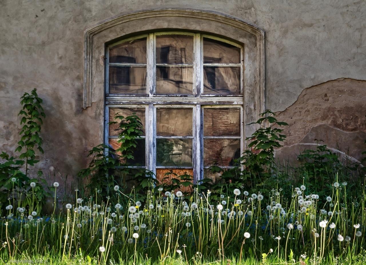 Głogówek - pałac   01