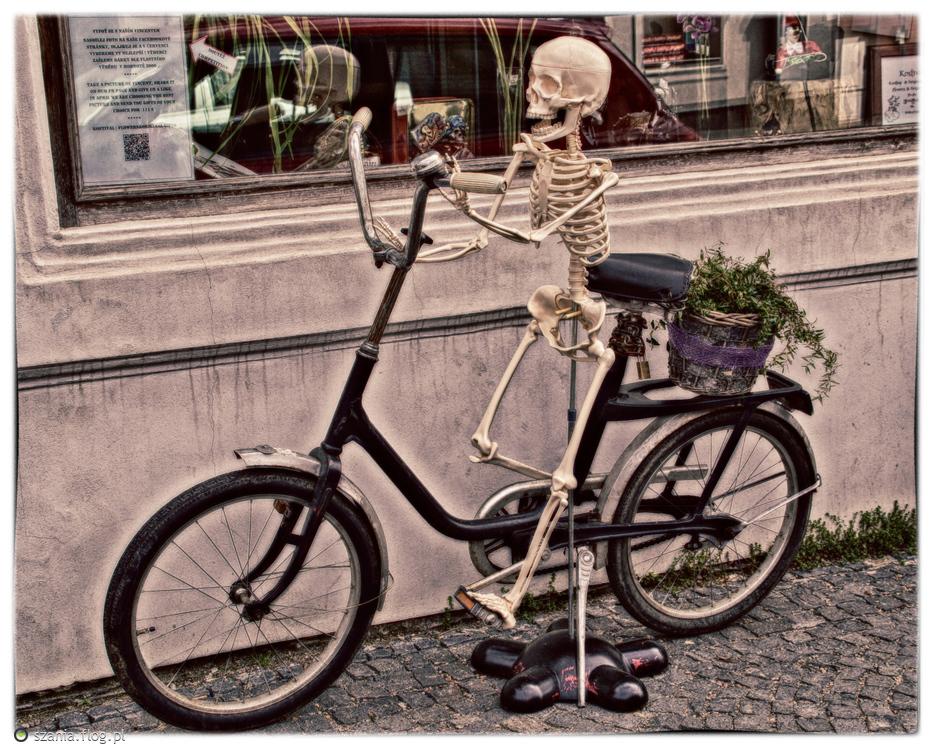 Gość na rowerze