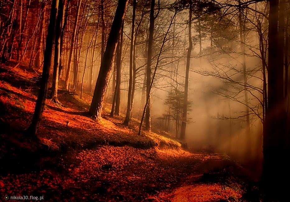 Sleeping Sun...