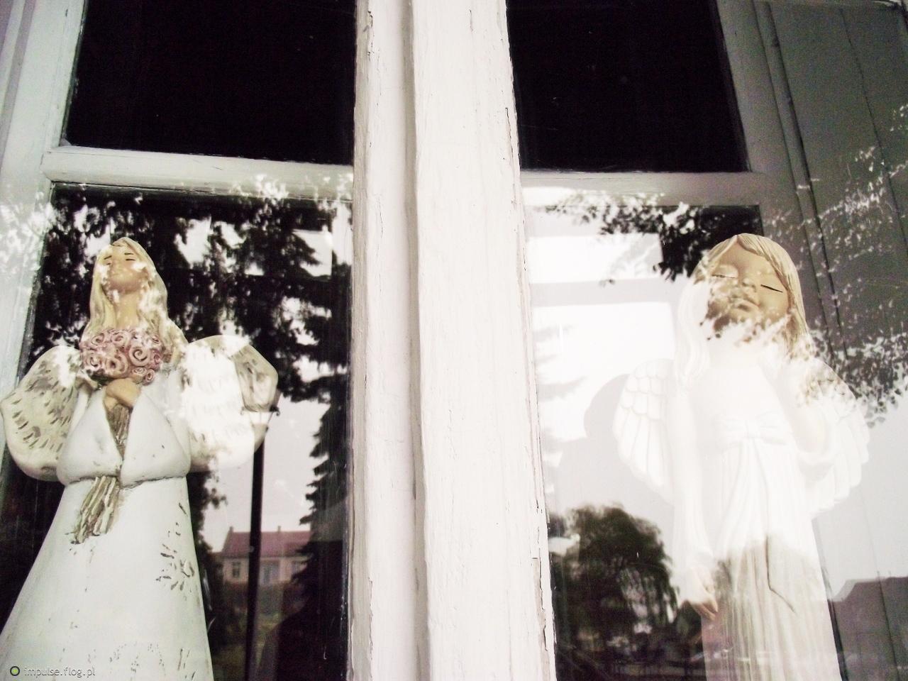 Aniołki w Lanckoronie .