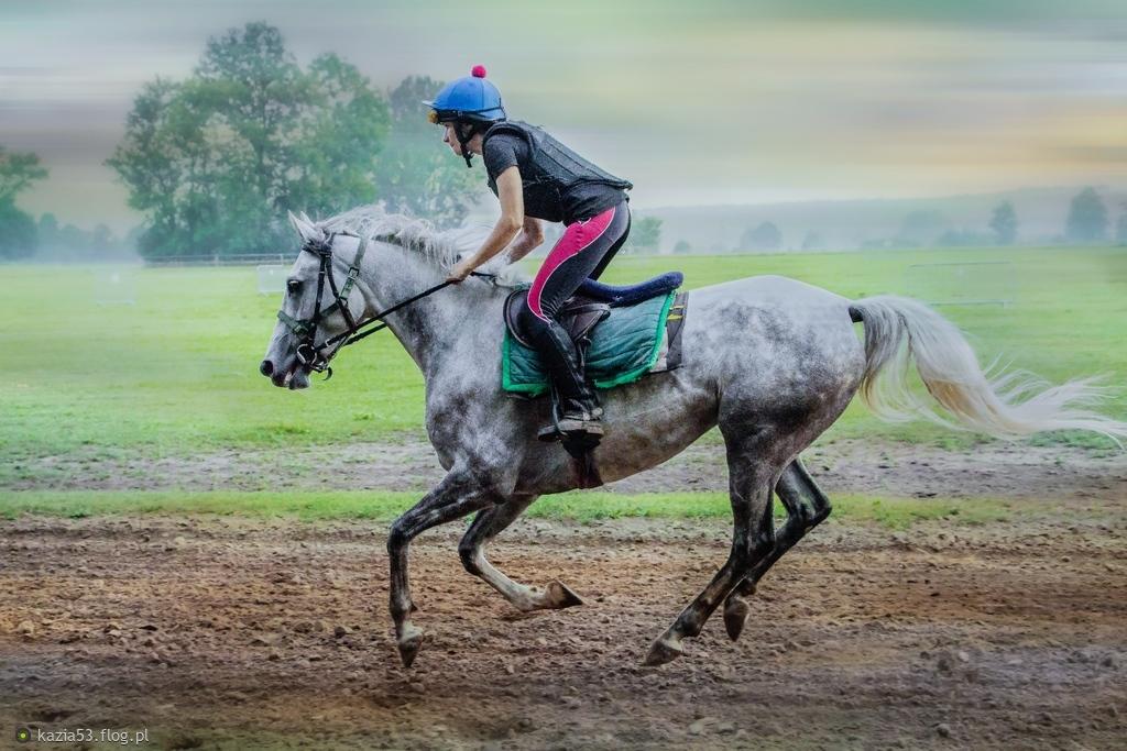 """""""Nie ma większej tajemnicy, niż magiczna więź łącząca jeźdźca z koniem"""""""