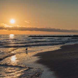 http://s23.flog.pl/media/foto_300/12118597_sunrise-leba.jpg