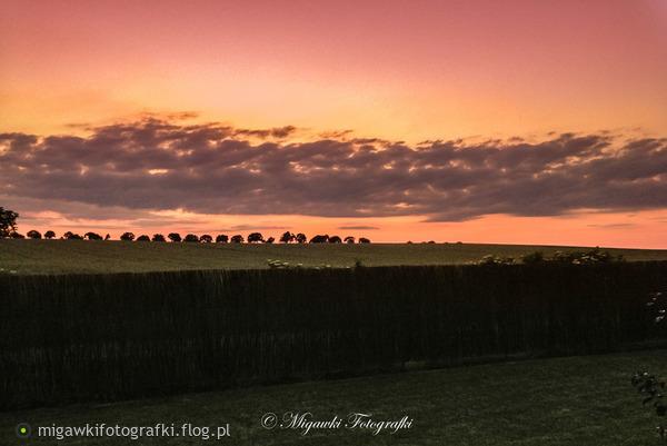 http://s23.flog.pl/media/foto_middle/12047935_letni--wiatr.jpg