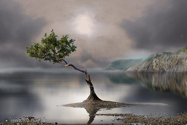 http://s23.flog.pl/media/foto_middle/12084397_samotnosc-to-jest-to-kiedy-czas-wlecze-sie-bez-konca.jpg