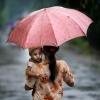 Portret z parasolem ::