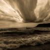 &quot;&quot;Wielu oskarża<br /> morze, choć wiatr zawini<br />ł.&quot; ::