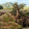 nad Epupa Falls – wodospa<br />dami na rzece Kunene, na <br />granicy Namibii i Angoli