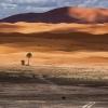 droga na pustynię :: Maroko - Sahara