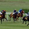 Wyścig... :: Gonitwa dla 3-letnich kon<br />i czystej krwi arabskiej <br />II grupy.
