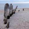 Drewno i morze