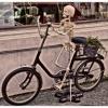 Gość na rowerze ::