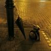 Pomnik psa Filusia....Tor<br />uń. :: Jestem nadal niepiśmienna<br />, cierpliwości...trzeba k<br />upić nowy sprzęt.Odwiedza<br />m Was, ale tak po cic