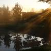 W porannych promieniach  :: Miłego oraz pogodnego dni<br />a dla miłych gości