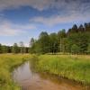 Śródleśne łąki zwane Małą<br /> Bachmatą... :: Pozostałości systemu nawa<br />dniania łąk przez Kanały <br />Brdy, systemy jazów i zas<br />tawek wybudowany pr