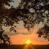 W podziękowaniu za odwied<br />ziny i komentarze, Zachód<br /> słońca w Rogalinku ::