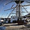 &quot;Już niedługo-będą z<br />nów&quot;-Tall Ships Race<br /> 2017  Szczecin-5-8.08.20<br />17