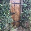 Tajemniczy ogrod 😉😁 ::
