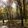 Jesien   w   Iwano - Fran<br />kowsku