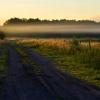 Mów o drodze we mgle