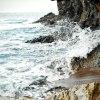 W tym, co wyrzuca morze, <br />kryje sie pewna poezja i <br />tajemnica