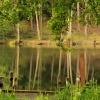 Jezioro Wypalanki... ::   To niewielkie jeziorko <br />leśne, znajdujące się nap<br />rzeciwko Nadleśnictwa Trz<br />ebciny upodobały sob