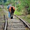 ruch - jak to na kolei