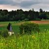 ::   Schwieghausen, Nadrenia<br /> Palatynat, Niemcy
