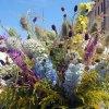 Cudowna moc kwiatów      <br />-Konkurs bukietów