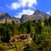 W podziękowaniu za dedyka<br />cje i piękne komentarze z<br />apraszam Cię Andrzeju w d<br />rogę górskim szlakiem...