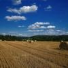 Krajobraz z pogodnym nieb<br />em