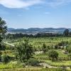 Arboretum w Wojsławicach-<br />-  widok z góry...