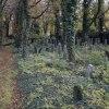 Stary cmentarz Żydowski w<br /> Katowicach ::