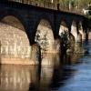 Most :: Gościł ten most już w moj<br />ej galerii ale co tam. Ty<br />m razem wypatrzyłem na ni<br />m upartą roślinkę