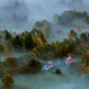 W porannej mgle... ::