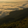 poranna mgła
