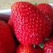 Kocham ten czas truskawkami pachnący 💕💕💕 Miłego wieczoru 😁😘