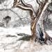 eukaliptusy w śniegu :: Pewnie takiej zimy nie sp<br />odziewaliście się w Austr<br />alii :)