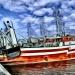 Kutry rybackie w Kołobrzegu